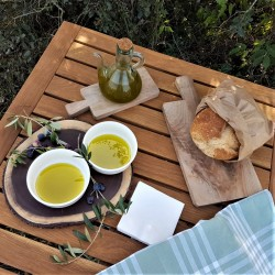 4L Extra Virgin Olive Oil Siós EVOO | Costers del Sió Winery