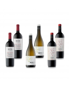 Wine Packs Costers del Sió Winery | DO Costers del Segre