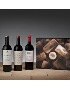 Lotes de vinos para regalo | Bodegas Costers del Sió