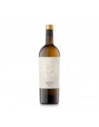 Comprar Vi Blanc | Cellers Costers del Sió | DO Costers del Segre